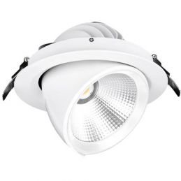 Downlight Led orientable...
