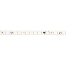 Aric LYN 14 - Ruban protégé...