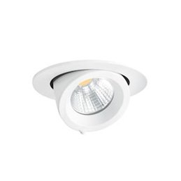 Aric RANDY 1 - Downlight...